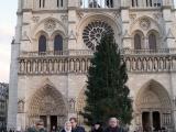 Площадь перед собором украшает рождественская ель